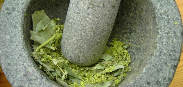 علاج رمل الكلى بالأعشاب