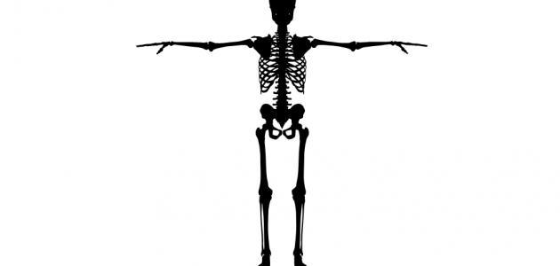 انواع امراض العظام
