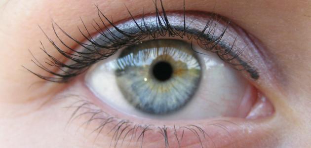 أسباب رفة العين