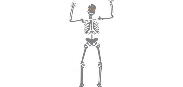 تغذية العظام