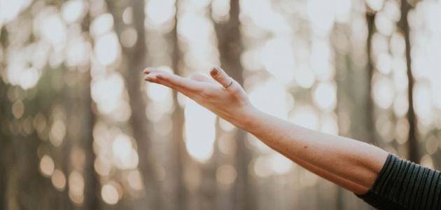 احمرار اليدين للحامل