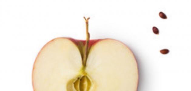 هل يمكن تناول بذور التفاح؟