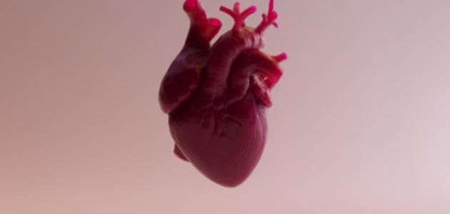 كل ما تريد معرفته عن متلازمة القلب المنكسر