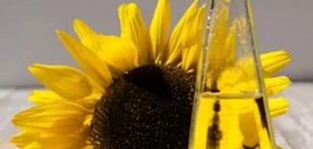 ما هي فوائد زيت دوار الشمس للشعر؟