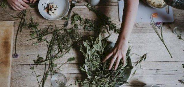 ما فوائد عشبة الكثيرا؟