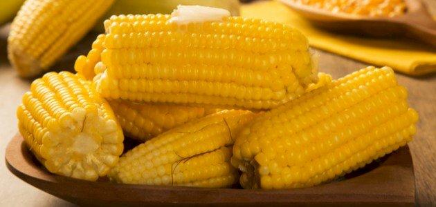 ما فوائد الذرة المسلوقة؟ وهل تفيد مرضى السكر؟