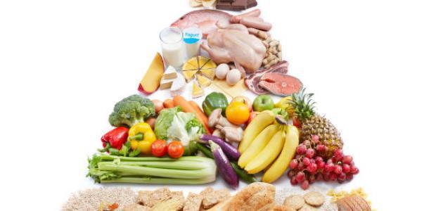 مفهوم التغذية