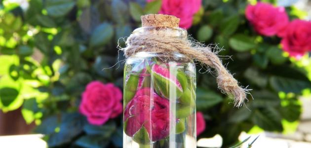 ما هي فوائد شرب ماء الورد على الريق