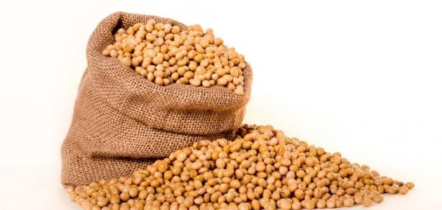 بروتين فول الصويا