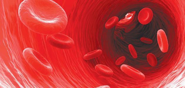 معلومات عن مرض الهيموفيليا