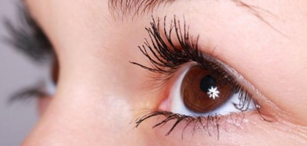 4f4a0dc29 اسباب رف العين اليسرى - إستشاري