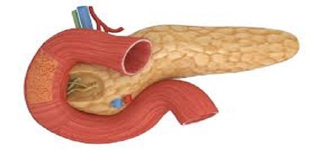 اعراض التهاب البنكرياس