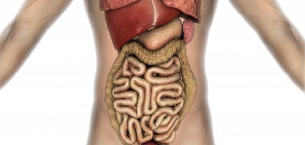 ما سبب مرض القولون