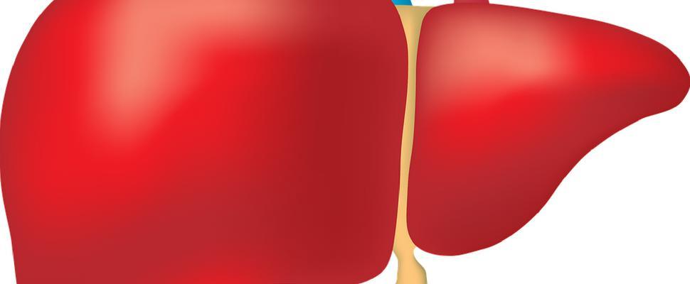 آلام الكبد الدهني